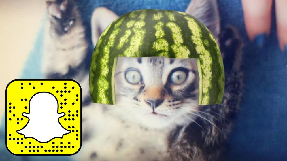 Ya puedes usar los filtros de Snapchat para tu gato