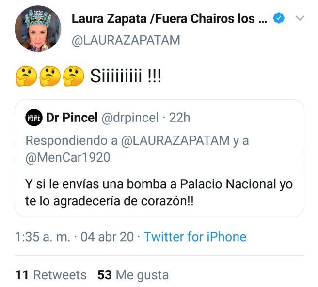Acusan a Laura Zapata de promover atentado a Palacio Nacional