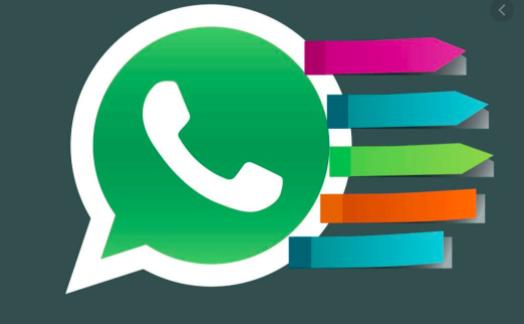 Mira como puedes organizar tus mensajes de WhatsApp utilizando etiquetas.