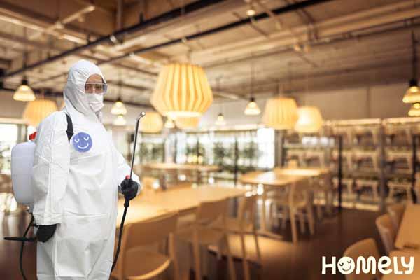 Homely, la startup mexicana que sanitiza restaurantes