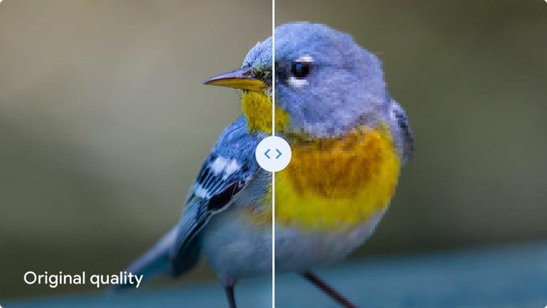 """Google Fotos admite que el modo """"alta calidad"""" baja la calidad de las fotografías 2"""
